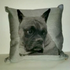 Cristions Pet Pillow