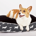 Dog Print Bed
