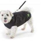 1Z Dog Coat