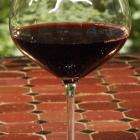Swimming Dog Red Wine glassware