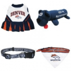 Super Bowl Dog Accessories