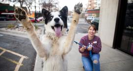 Mutt Day - Best Friends