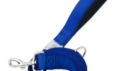 Your Perfect Puppy Leash