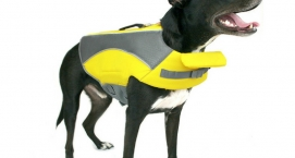Wave Rider Life Vest