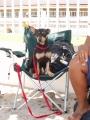 Bon on beach chair.JPG
