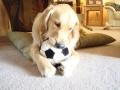 Cooper Soccer 002.jpg