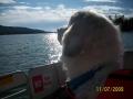 boating in big bear 012.JPG